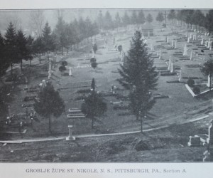 1915 St. Nicholas Cemetery, Hahn Road, Pittsburgh - Section A