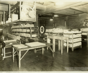 1937 - Meat Pack at Pgh. Joint Stock Yards on Herr's Island. MSP80_B002_F07_I02 *