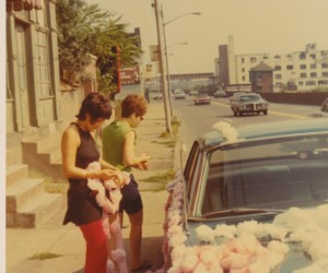 1970 - Decorating cars with carnations & crepe paper for a wedding. Marohnic Book Store on left.